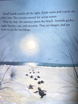 text © April Pulley Sayre illustration © Annie Patterson